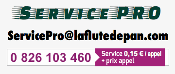 Service-Pro-de-LA-FLUTE-DE-PAN